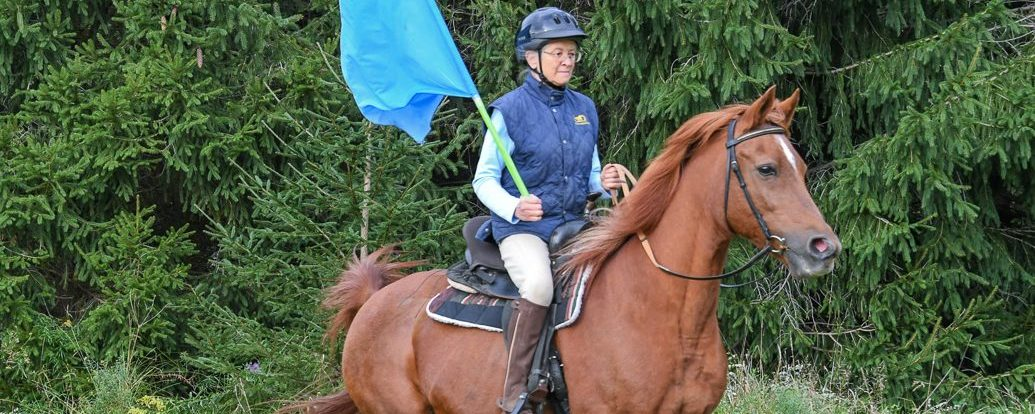 Protector Leadership and Horse Agility
